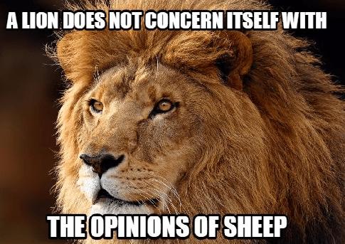 Lions-Meme